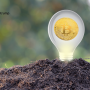 The Environmental Impact of Cryptocurrency and Its Solutions